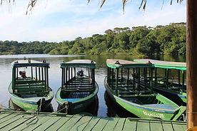 Amazon Ecopark_13.jpg