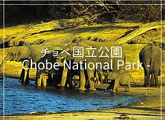チョベ国立公園・アフリカ