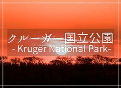 クルーガー国立公園・南アフリカ
