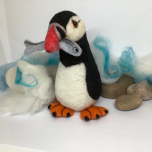 Pebbles the Puffin