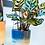 Thumbnail: Mojave Hanging Planter Blue