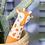 Thumbnail: Gina Giraffe Plant Watering Spike