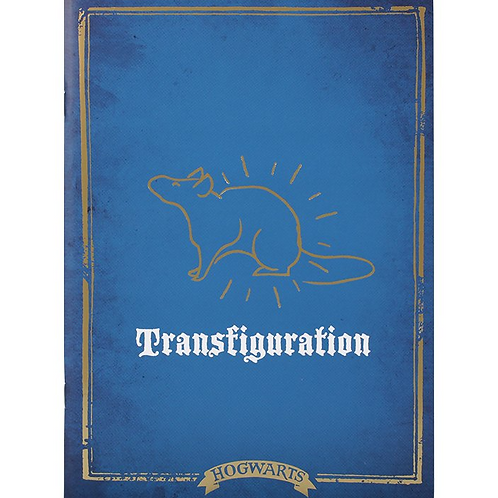 Harry Potter Transfiguration Exercise Book