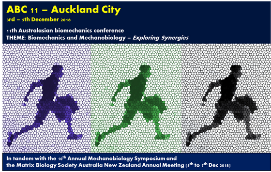 Kia Ora! The Australasian Biomechanics Conference is set for a return to New Zealand in December