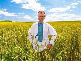 голомша (спельта) поле + Богдан, ФГ ;КОС