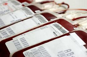 especialista banco de sangre
