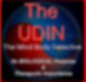 UDIN_29571024_174619093190181_6252275886