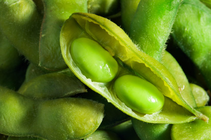 Soy Products & Breast Cancer: Do They Increase or Decrease My Risk?
