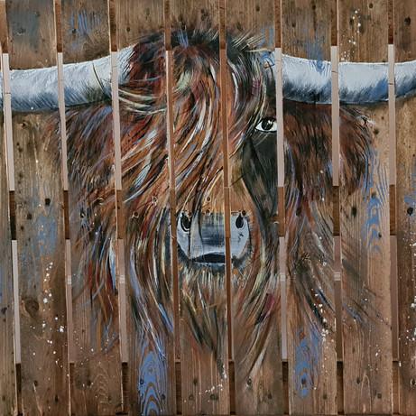 Highlander op Pallet, €175,=