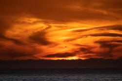 Sunset_135A2941