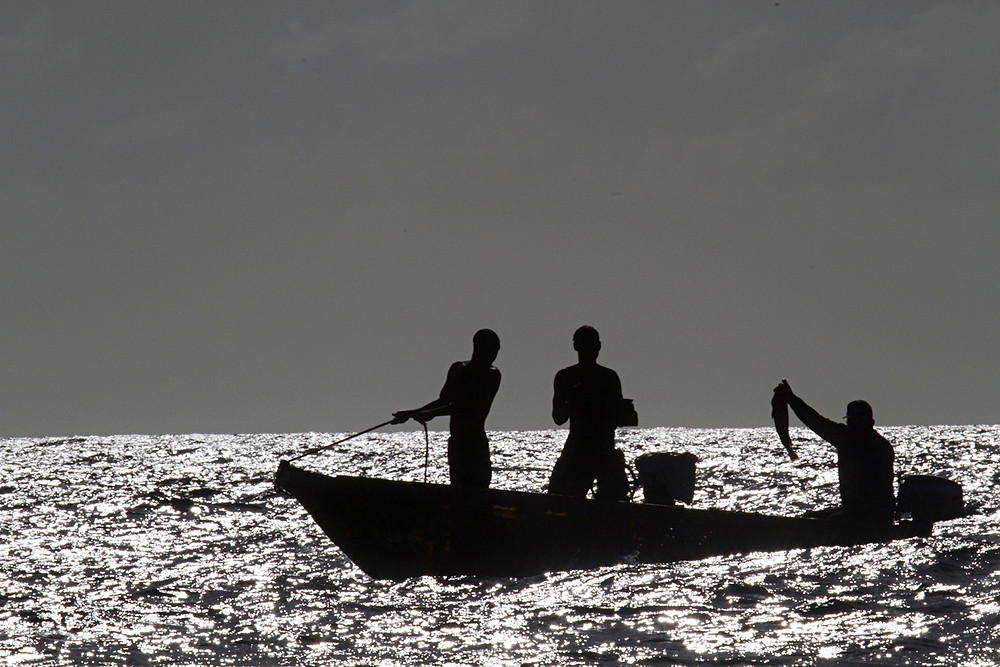 Dominican fishermen offer their catch