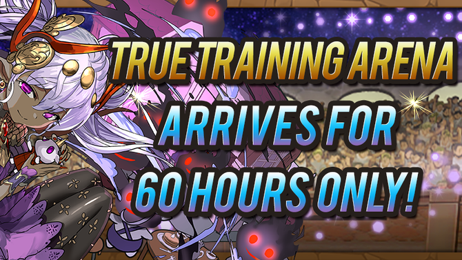 True Training Arena Arrives for a Limited Time!