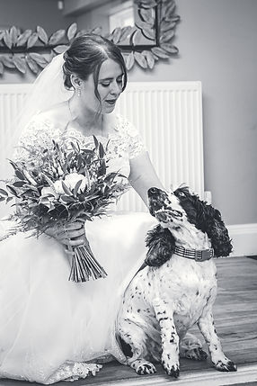 Adept Imagery Wedding Photography