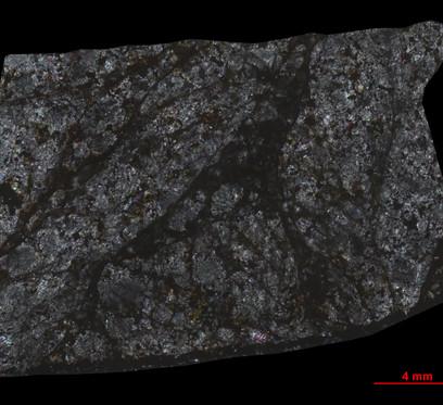 Esteremicroscópio Ótico Zeiss Discovery V8