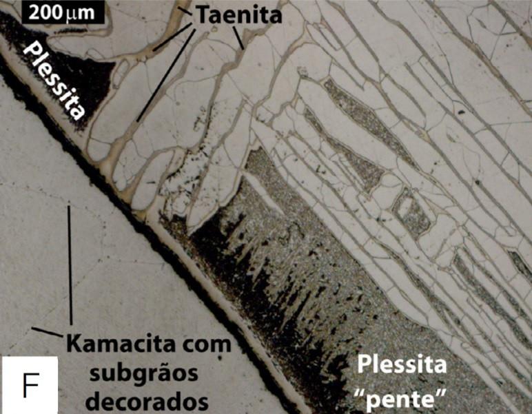 Microscópio Ótico Zeiss Axioskop 40