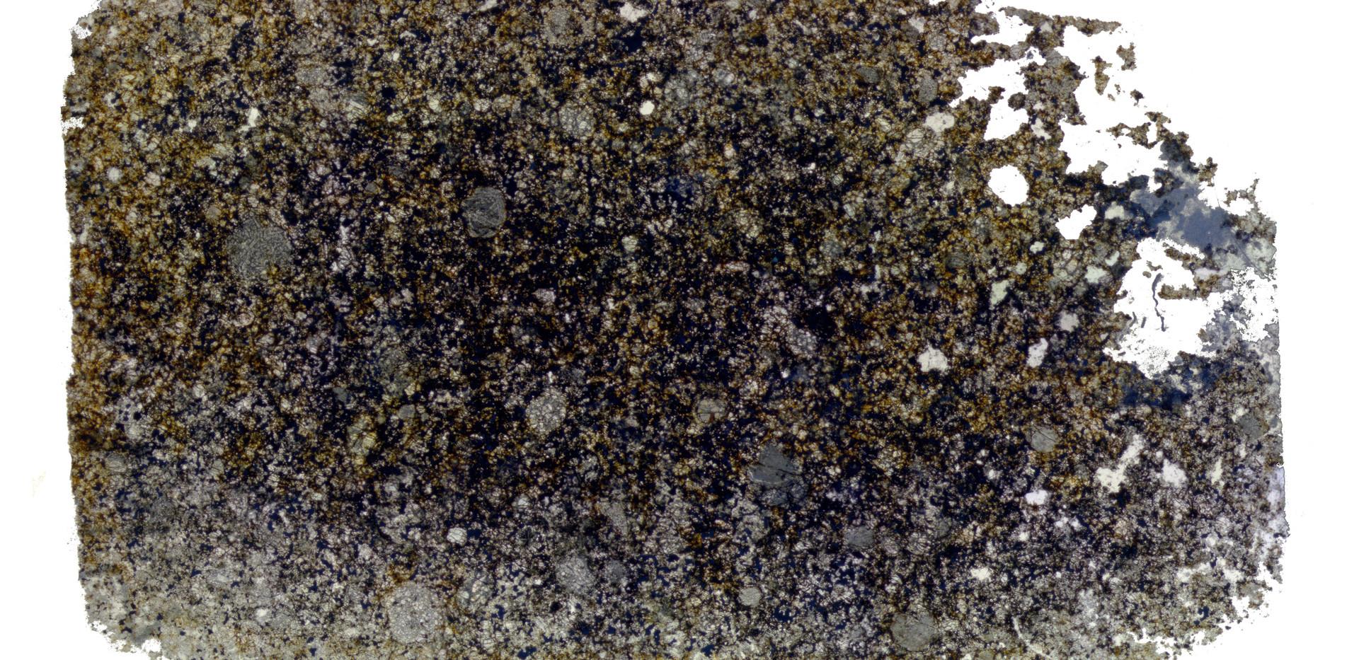 Estereomicroscópio Ótico Zeiss Discovery V8