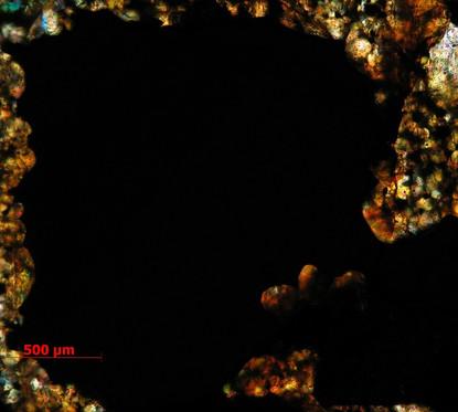 Microscópio Ótico Zeiss Axioplan