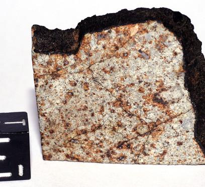 Fragmento do meteorito Patrimônio exibindo sua textura pouco condrítica, seu intemperismo terrestre com a oxidação no entorno dos grãos metálicos, assim como a crosta negra de fusão.  Crédito da Imagem: André Moutinho