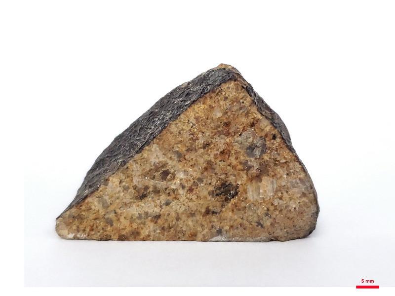 Fragment of the Serra de Magé achondritic meteorite, classified as Eucrite.  Image Credit: Amanda Tosi
