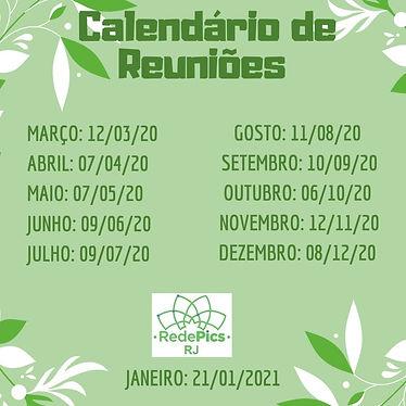 reunião_redepics_rj.jpeg