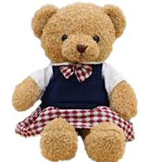 bear in girl uniform.jpg