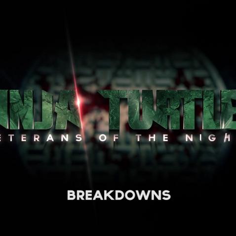 Ninja Turtles: Veterans of the Night - Breakdowns