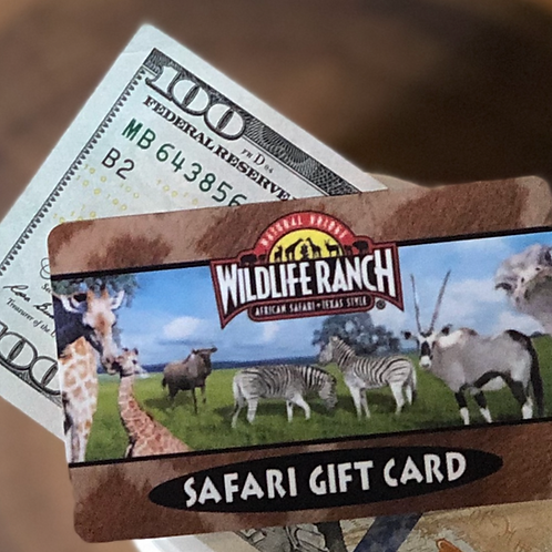 GIFTCARD $100
