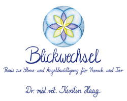 Blickwechsel Logo