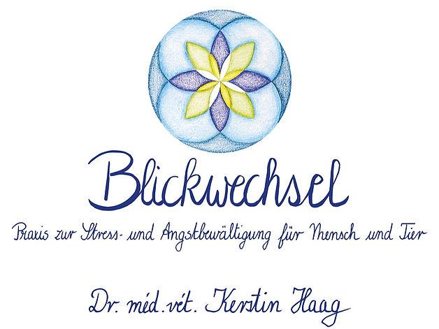 Blickwechsel%20Logo_edited.jpg
