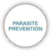 Parasite Prevention Icon.png