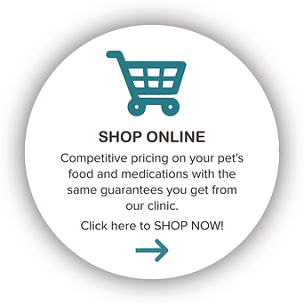 Online Store Button.png