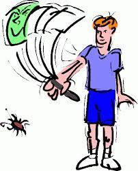 Bug swatter.jpg