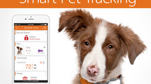 Alarm.Com to Partner with Tagg GPS Pet Finder