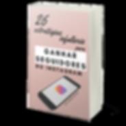 ebook_ganhar_seguidores_no_instagram_thu