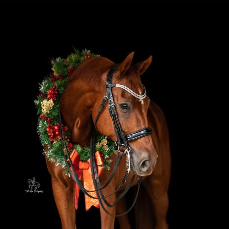 An orange in a wreath
