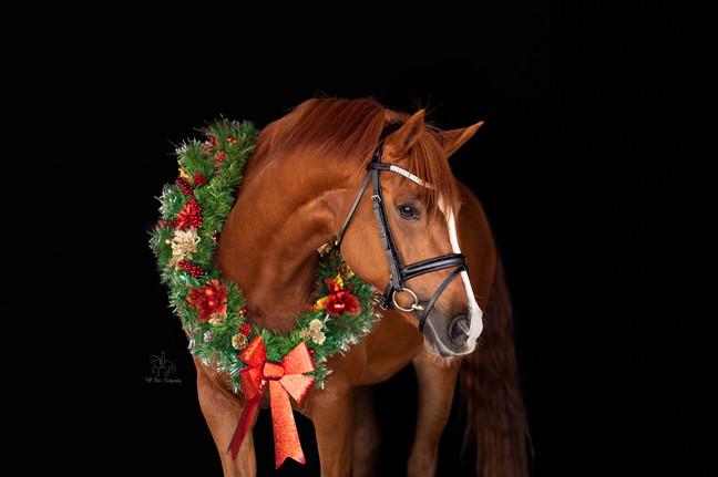 Davina Christmas FB-.jpg