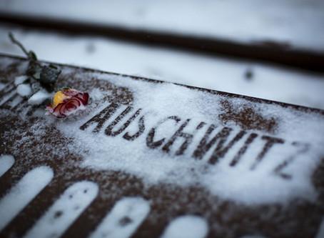 Auschwitz Reflection