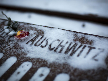 Auschwitz Reflection