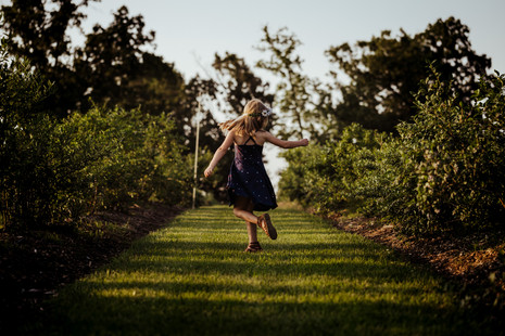 Rustic Arrow Photography | Children | Neosho Missouri | SW Missouri | NW Arkansas | Blueberry Farm