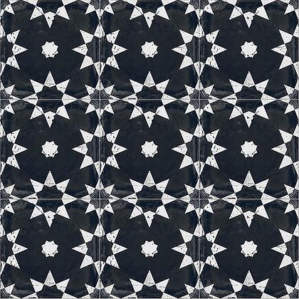 Valencia - Monochrome star