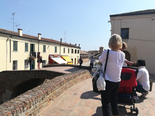 Four reasons to visit the Po Delta park near Ferrara