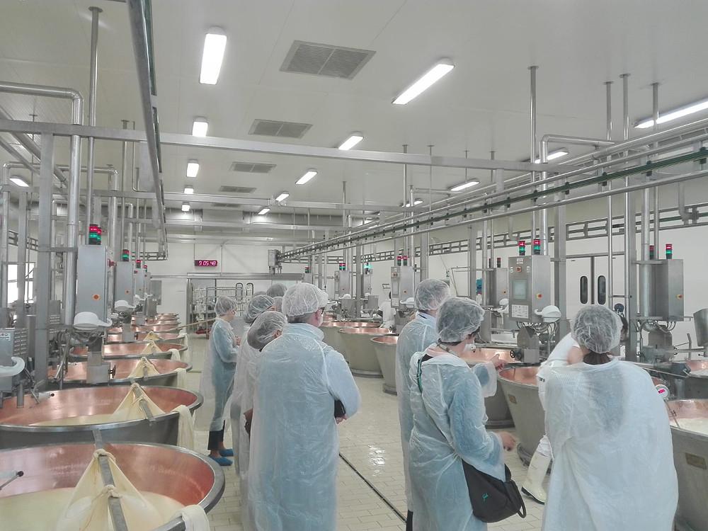 Parmigiano Reggiano Dairy