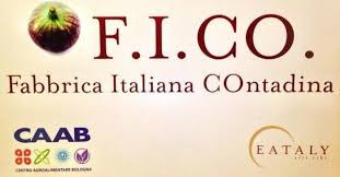 Your own escorted FICO tour