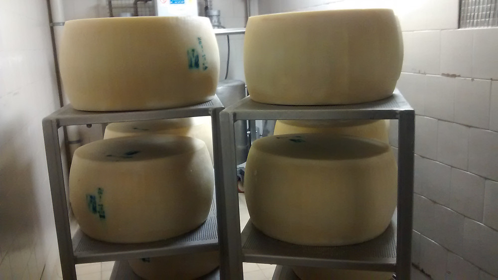 Parmigiano food tour