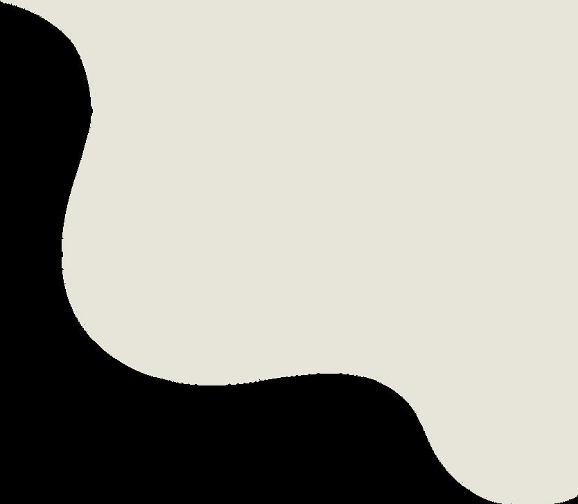 MERLIN_web_Projet_shape-02.png