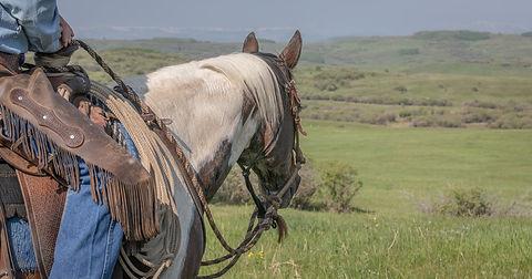 Cowboy on paint horse-6996.jpg
