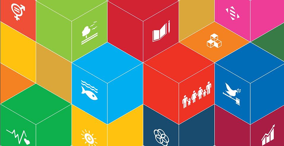 SDG Primer.png
