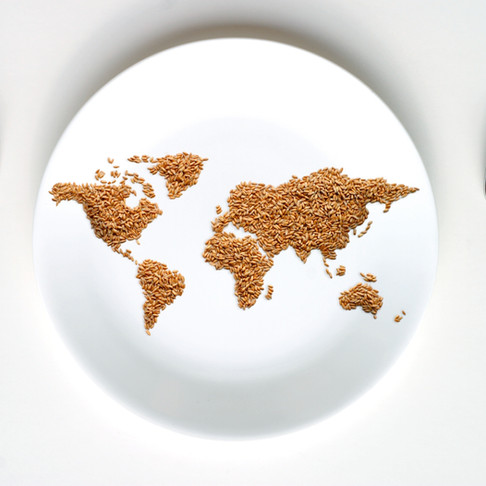 Food Security- A Complex Global Issue
