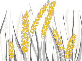 wheat-liis-luige.jpeg