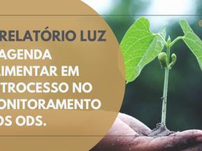 V RELATÓRIO LUZ - A agenda alimentar em retrocesso no monitoramento dos ODS.